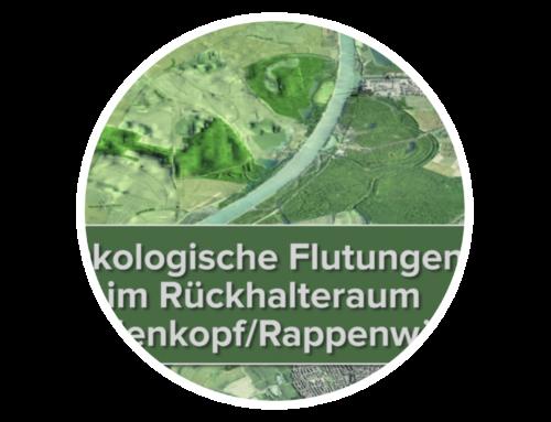 Ökologische Flutungen – Ausstellung und Animation