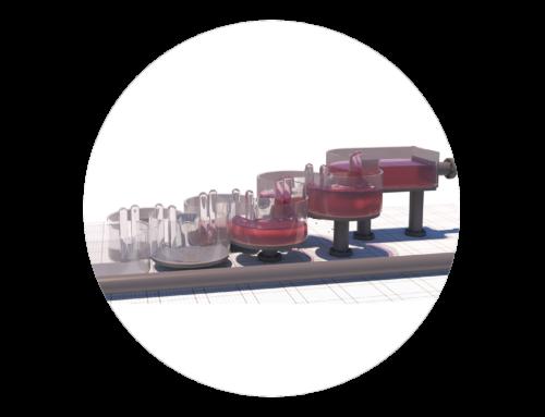 Modellrekonstruktion einer Fischaufstiegsanlage (FAA)